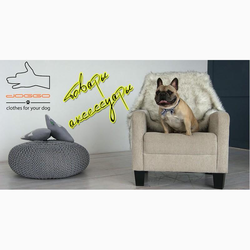 Фото 2. Одежда для собак французский бульдог и крупных пород - ТМ DOGGO