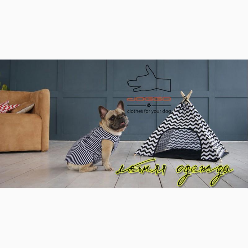 Фото 3. Одежда для собак французский бульдог и крупных пород - ТМ DOGGO