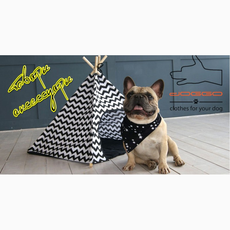Фото 5. Одежда для собак французский бульдог и крупных пород - ТМ DOGGO