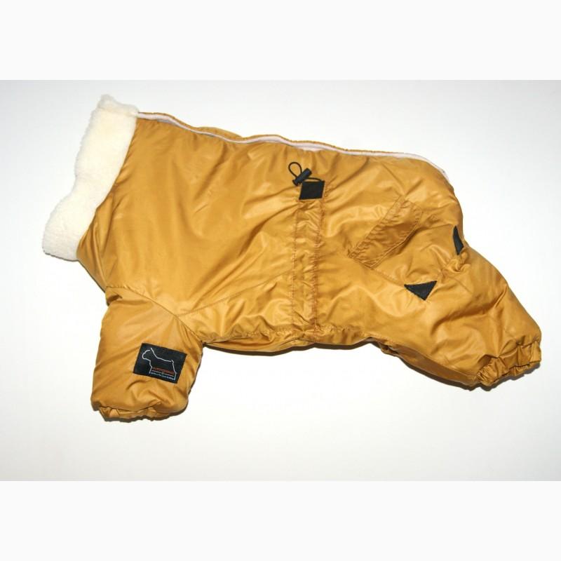 Фото 13. Одежда для собак французский бульдог и крупных пород - ТМ DOGGO