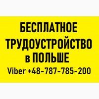 РАБОТА в ПОЛЬШЕ для Украинцев | Бесплатное трудоустройство