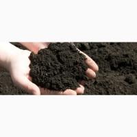 Продам Чорнозем, грунт растительный и на подсыпку